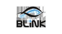 blink-logo-2